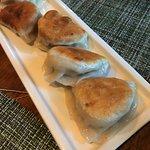 Hand-made Dumplings