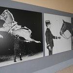 photos du cavalier et de son cheval
