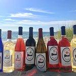 Cape Cod Winery