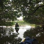 Sea Life Kayak Adventures照片