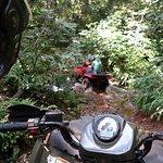 Cruzando riacho - Quadriciclo Território Selvagem
