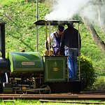 The one steam loco!