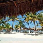 Nohoch Kay Beach Club Photo