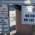 Rules for Caddy's and Beach