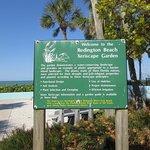 Xeriscape Garden at Beach Access
