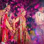 Wedding (317959473)