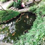 Happoen Garden Φωτογραφία