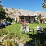 Foto de Palm Springs Koffi