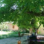 Yahshigul Guesthouse照片