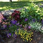 Bar Harbor Village Green on July 4th weekend