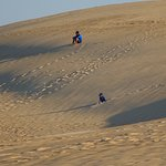 kids love climbing up and down the dunes