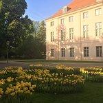 Photo of Schoenhausen Palace