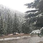 Priest Gulch Campground , RV Park, Cabins & Lodge Bild