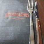 Hippopotamus의 사진