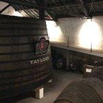 Foto de Taylor's Port
