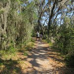 Much of the trail has shade from lovely trees