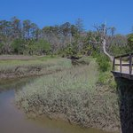 Boardwalks and bridges over the marsh