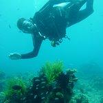 Photo of Tabanka Divers El Nido