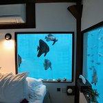 Inside the underwater room