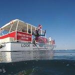 Foto Capt. Hook's Looe Key Reef Adventures & Strike Zone Charters