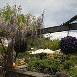 Photo of Barakura English Garden