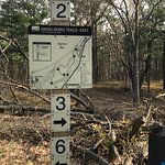 Trail maps are posted at the main intersections (the numbered points)