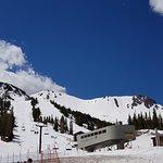 Mammoth Mountain照片