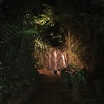 Paronella Park Foto