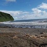 The Maui Road to Hana Tour Company照片