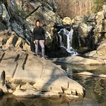 Foto de Scott's Run Nature Preserve