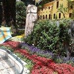 Bellagio Conservatory & Botanical Garden Resmi