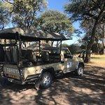 Bilde fra Gifts of The Kalahari Safaris