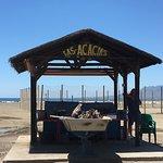 Foto de Las Acacias