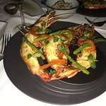 Delicious Grilled Langoustine Special