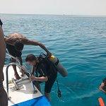 صورة فوتوغرافية لـ Pyramids Diving Center