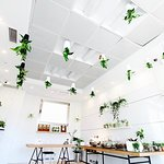 Tienda de jardines verticales y plantas por Madrid Río