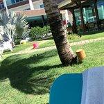 肯姆巴里酒店照片