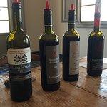 Private tasing of amazing wine