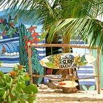 Foto de Punta Cana Surf Adventure