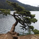 Lake Cascade State Park照片