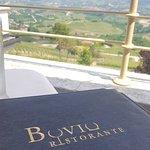 Photo of Bovio