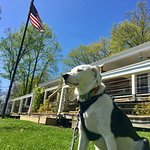 Our dog Maggie had a great time here!