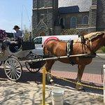 Photo de Cape May Carriage Company