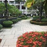 Bilde fra Sofitel Philippine Plaza Manila