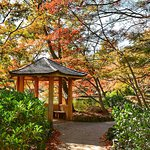 Fort Worth Japanese Garden resmi