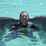 Foto de Dolphin Island