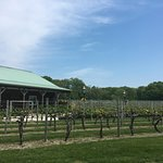 Cape May Winery Image