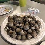 Hum Shells