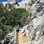 صورة فوتوغرافية لـ Lake Shasta Caverns