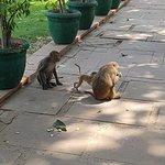 Фотография Gandhi Smriti